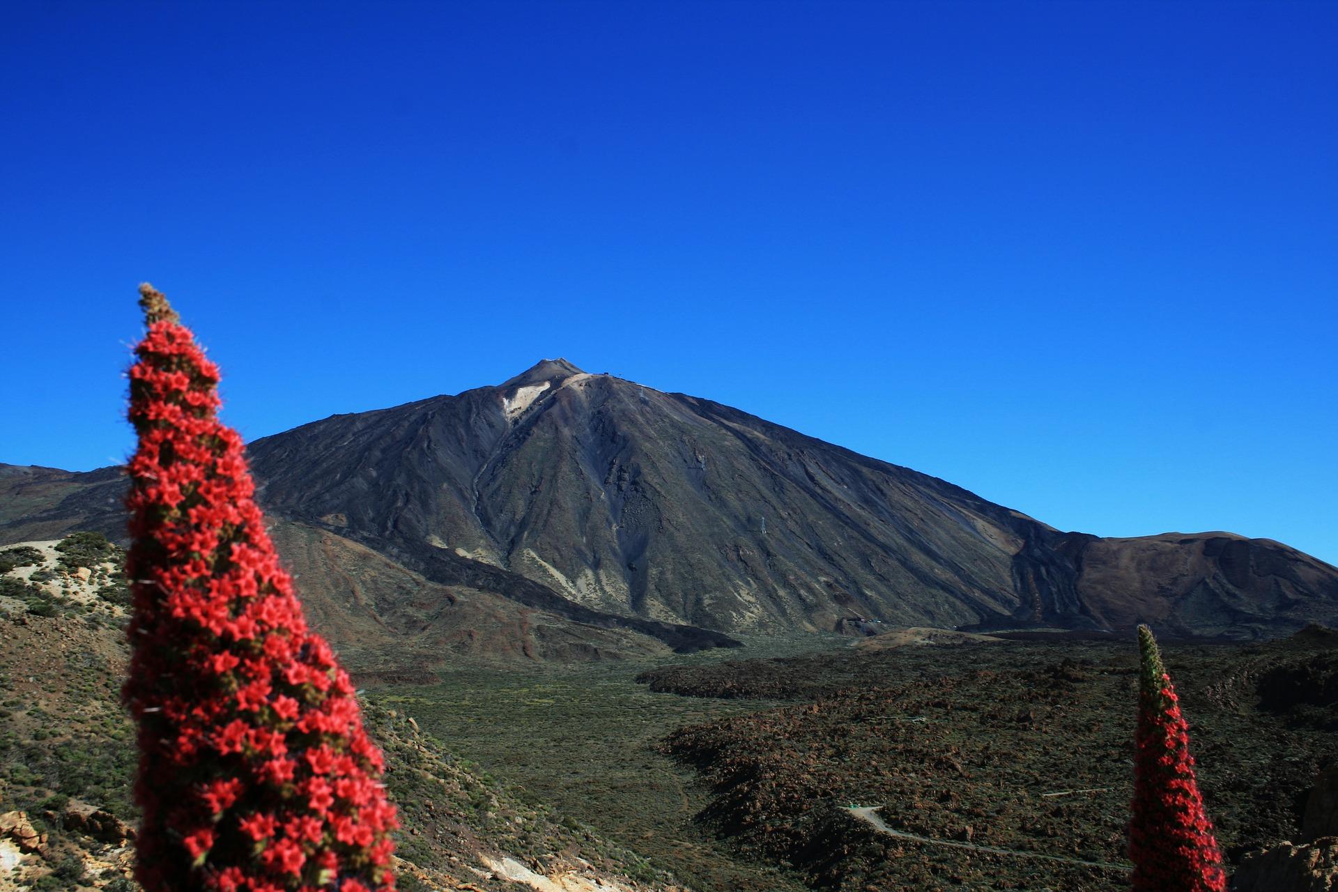 La voz de Tenerife
